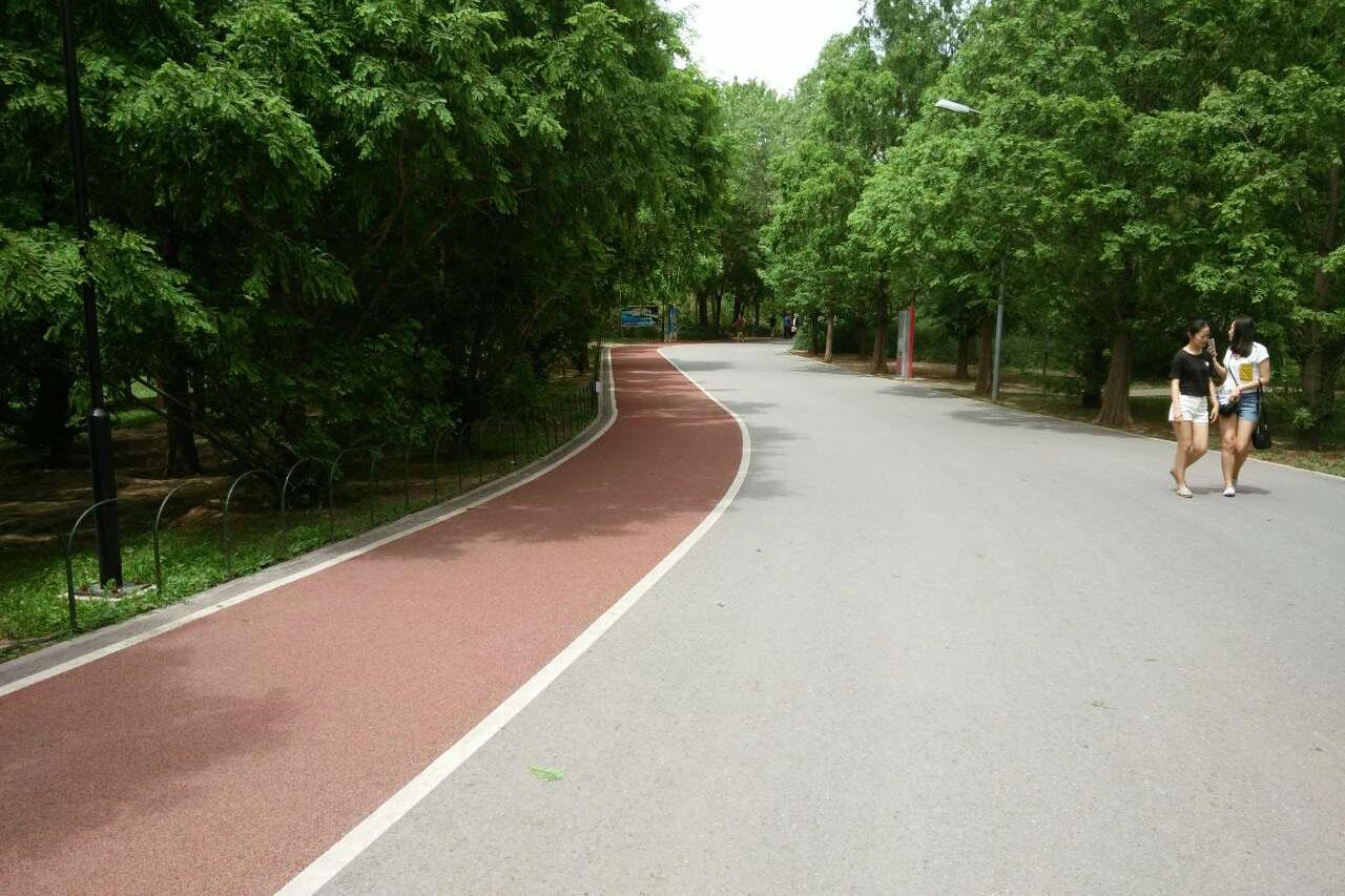健身步道专用地坪